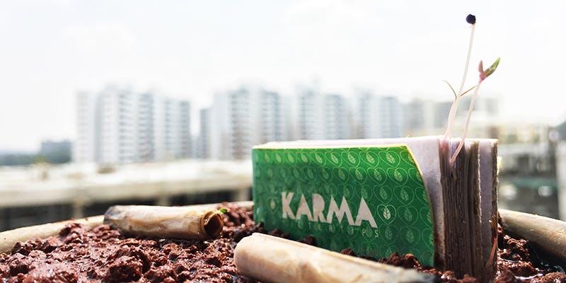» Transformer les mégots en plantes pour lutter contre la pollution des cigarettes !