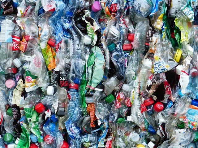 » Une bactérie qui mange du plastique découverte dans une déchetterie